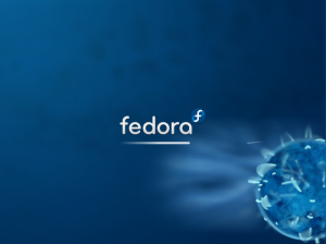 Boot graphique de Fedora 10